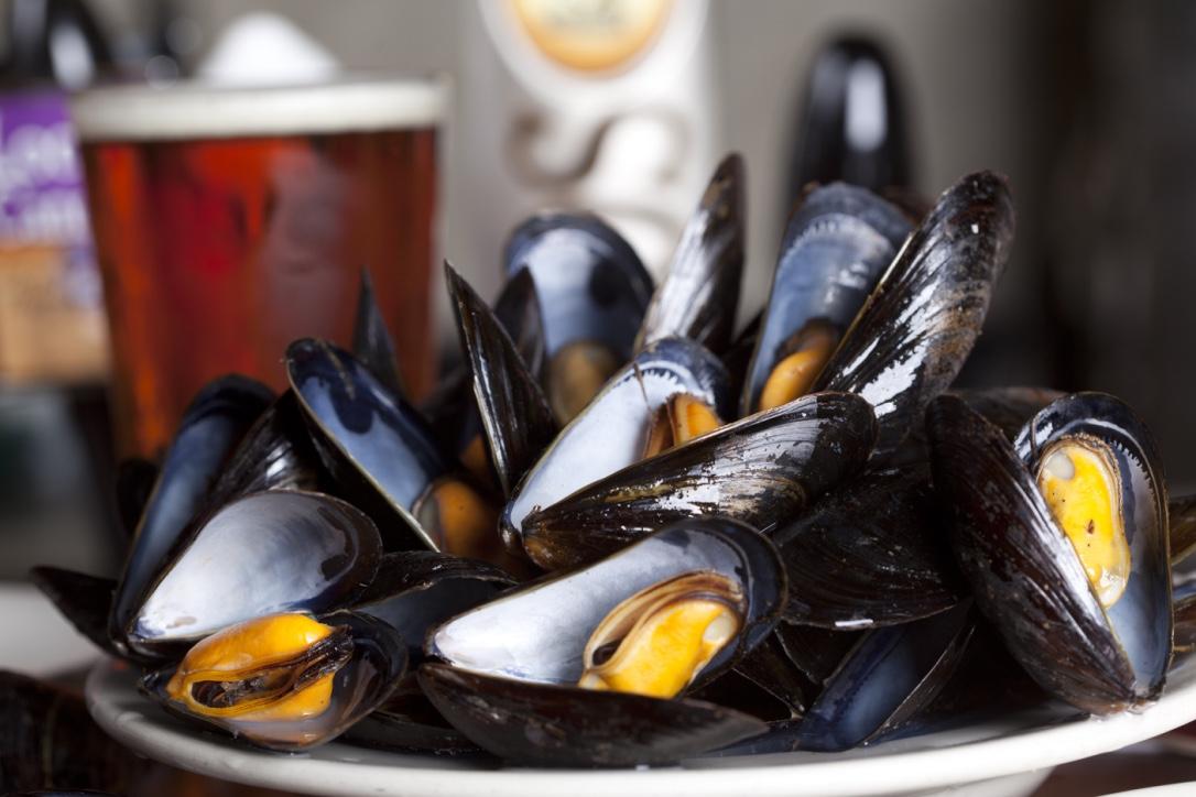 berthas world famous mussels